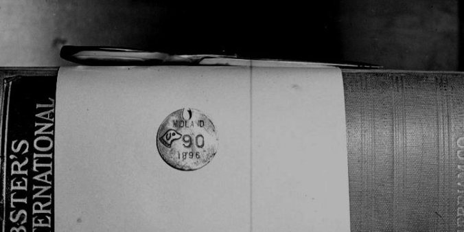 2006 0020 0976(3)