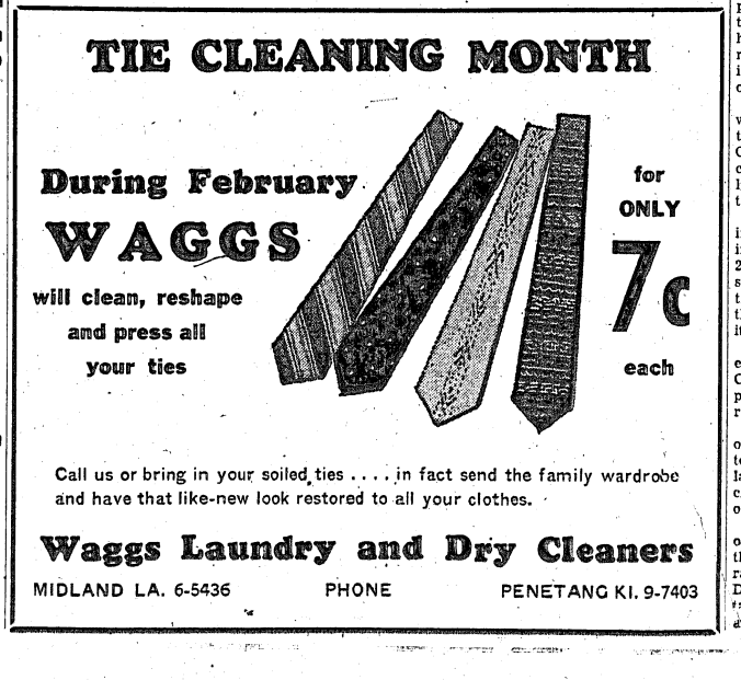 waggs-tie-cleaning